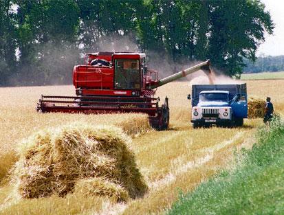 Yanlış tarım politikaları tüketiciyi açlığa terk etti
