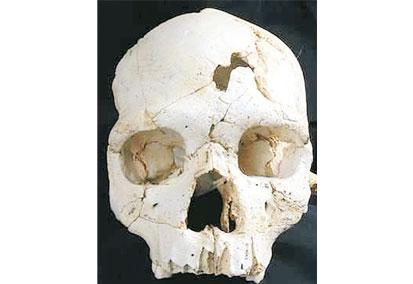 Şiddetin 430 bin yıllık izi