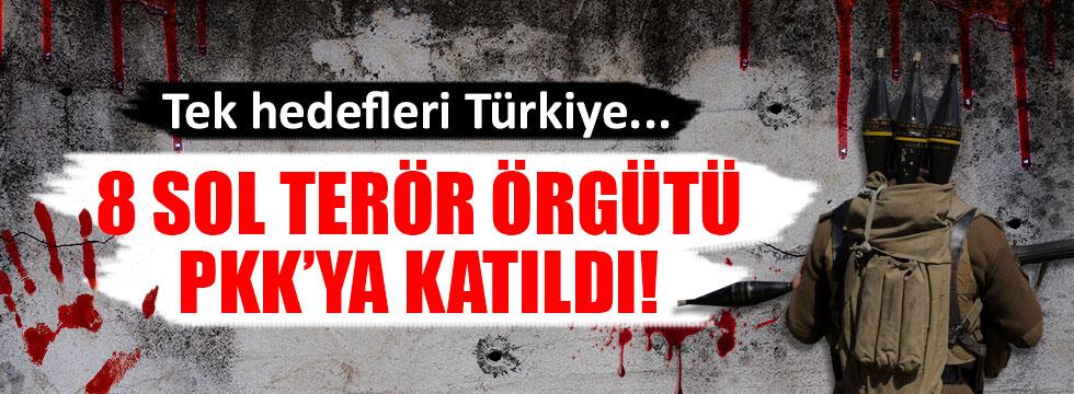 8 sol terör örgütü PKK'ya katıldı