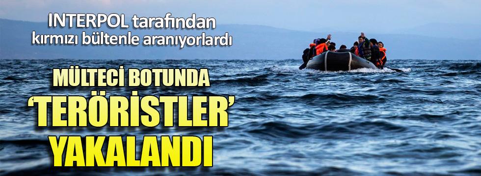 Mülteci botunda IŞİD'li teröristler yakalandı