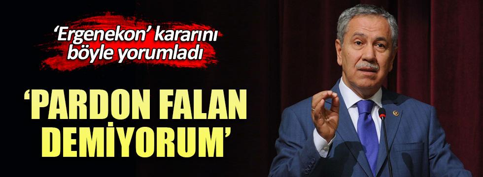 Bülent Arınç'tan olay 'Ergenekon' açıklaması