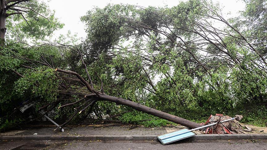 Hortum ve fırtına: 51 ölü