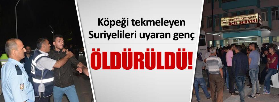 Suriyeliler Türk gencini öldürdü!