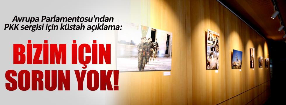 Avrupa Parlamentosu'ndan küstah PKK sergisi açıklaması