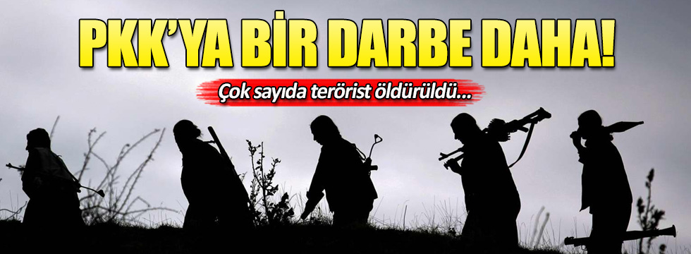 Hakkari'de PKK'ya darbe