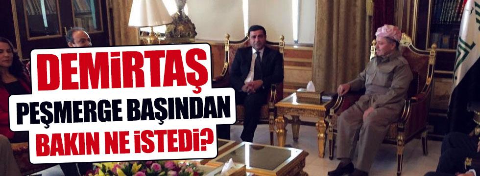 Demirtaş, Barzani'den destek istedi