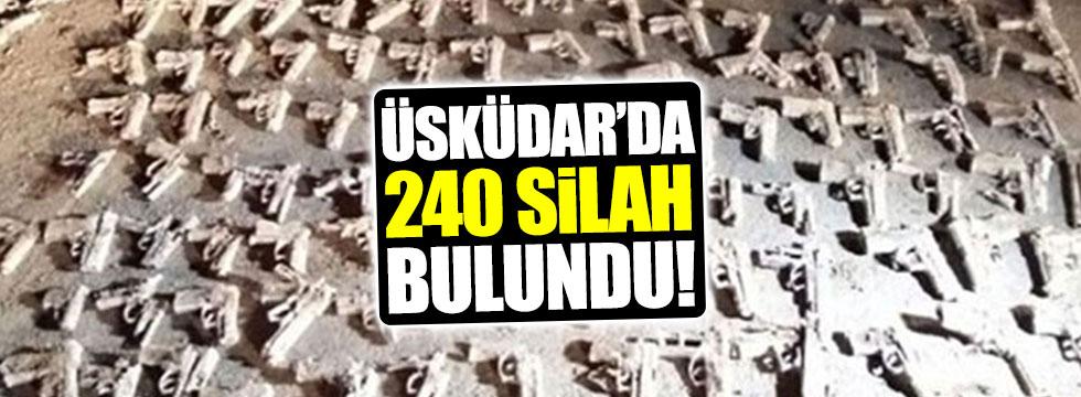 Üsküdar'da toprağa gömülü 240 silah bulundu