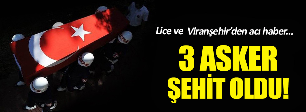 Lice ve Viranşehir'den acı haber: 3 şehit