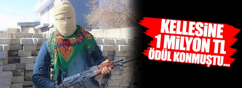 Rojhat Vartinus kodlu terörist öldürüldü