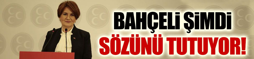 Meral Akşener'den MHP Genel Merkezi'ne çağrı