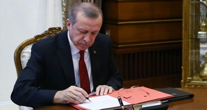 Erdoğan, 3 kanunu onayladı