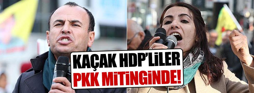 HDP'li kaçak vekiller Brüksel'de terörist gösteride konuştular