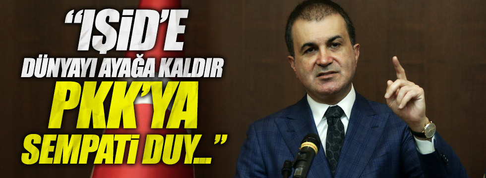 AB Bakan'ı Çelik'ten, HDP açıklaması