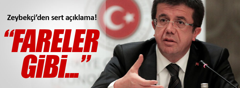 Zeybekçi'den HDP'lilere! Fareler gibi...