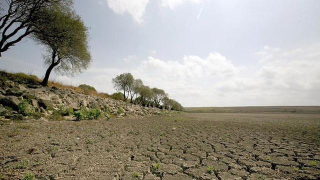Türkiye'nin iklim politikası yok