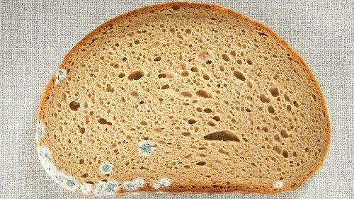 Küflü gıdalar hiçbir şekilde tüketilmemeli