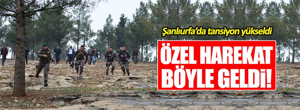 Özel Harekat Şanlıurfa'da operasyon düzenledi