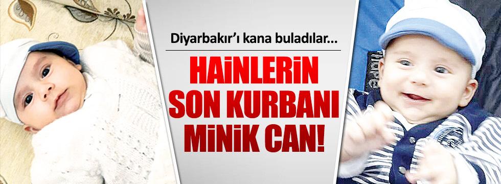PKK bebek katletmeye devam ediyor