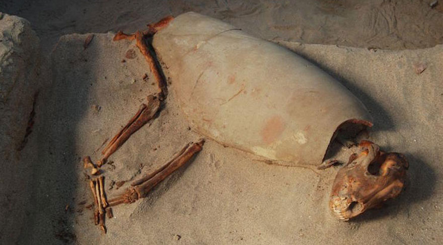 Mısır'da 2000 yıllık hayvan mezarlığı bulundu