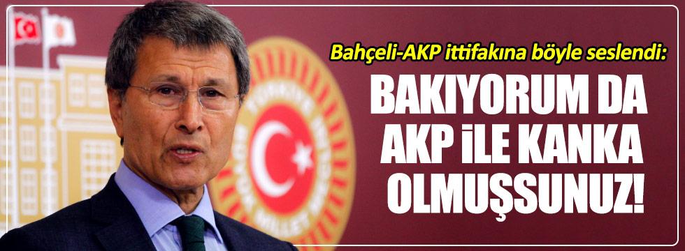 """Halaçoğlu: """"Bakıyorum da AKP ile kanka olmuşsunuz!"""""""