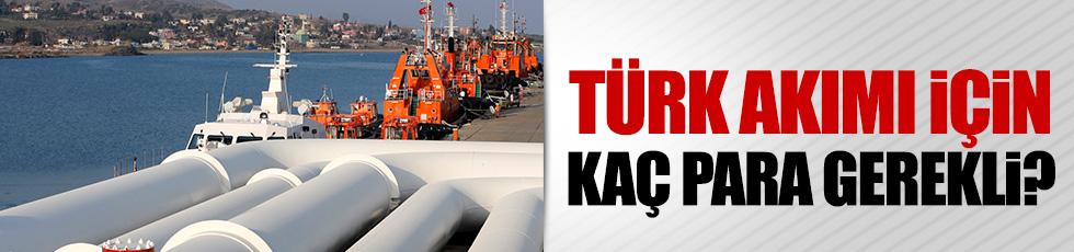 Türk akımı için kaç para gerekli?