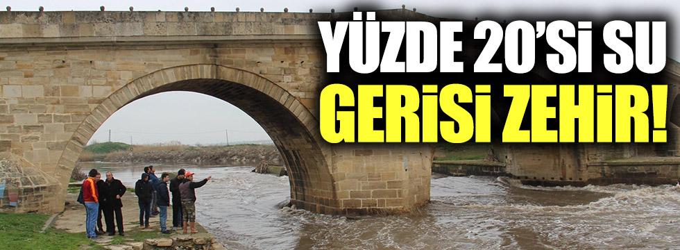 Ergene Nehri'nin yüzde 20'si su, gerisi zehir