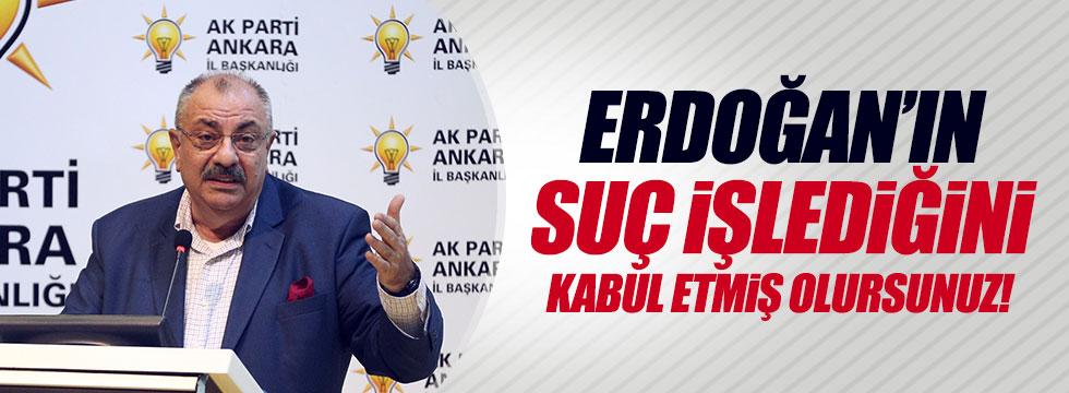 """Türkeş, Erdoğan'ın """"suç işlediğini"""" kabul etti"""