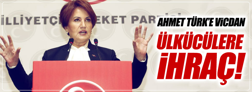 """Akşener: """"Ahmet Türk'e vicdan, Ülkücülere ihraç!"""""""