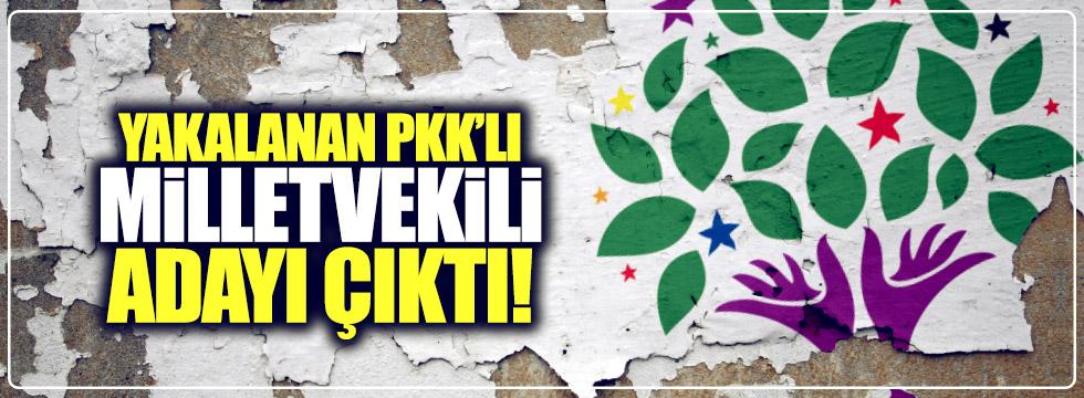 Yakalanan PKK'lı HDP'li eski milletvekili adayı çıktı