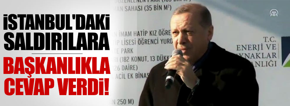 Erdoğan o saldırılara başkanlık ile cevap verdi
