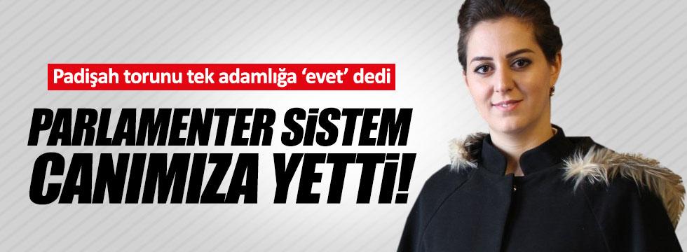"""""""Parlamenter sistem canımıza yetti"""""""