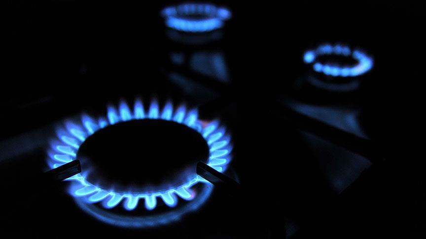 46,2 milyar metreküp doğalgaz tüketilecek