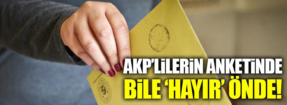 AKP'lilerin anketlerinde bile 'Hayır' önde!