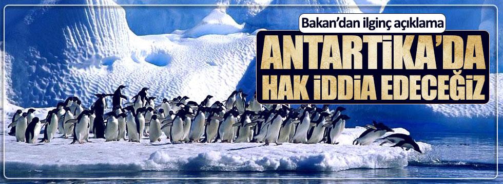 Bakan Özlü: Antartika'da hak talep edeceğiz