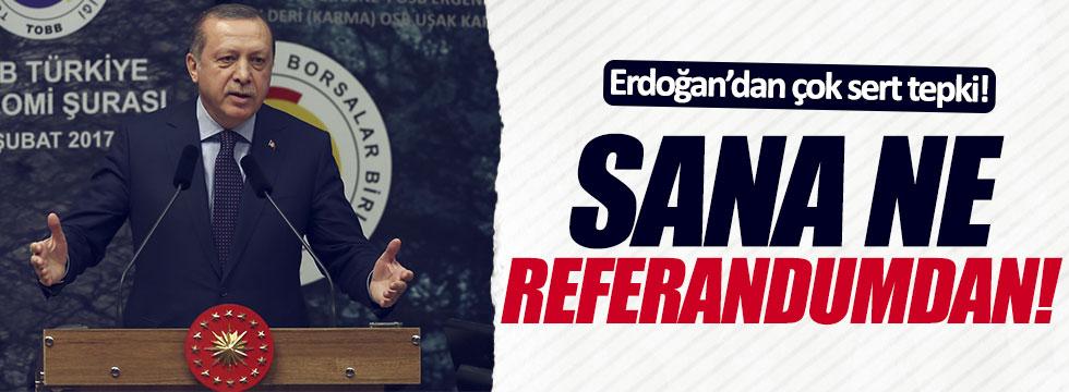 Erdoğan: Sana ne referandumdan!