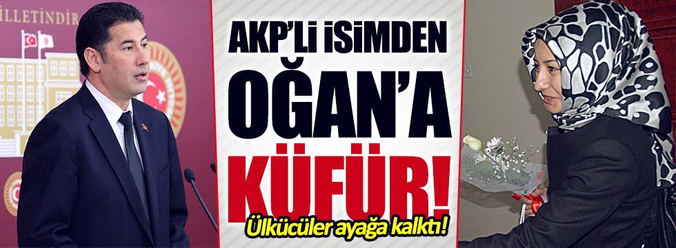 AKP'li Şimşek'ten Sinan Oğan'a küfür!