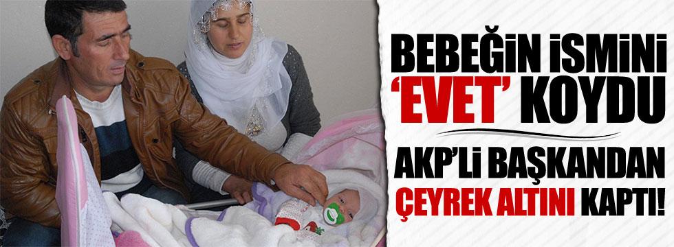 Bebeğin adını 'êvet' koyunca AKP'den çeyrek altın geldi