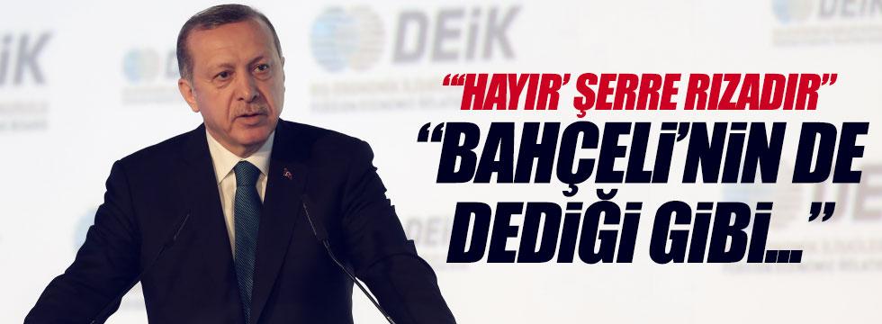 """Erdoğan: """"'hayır' şerre rızadır'"""