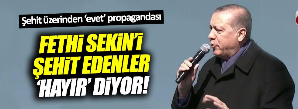 Erdoğan'dan Fethi Sekin üzerinden 'evet' propagandası