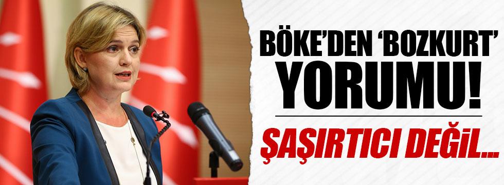 Böke'den, Başbakan'ın 'bozkurt' işaretine yorum
