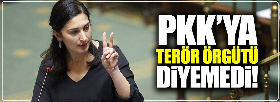 PKK'ya terör örgütü diyemedi!