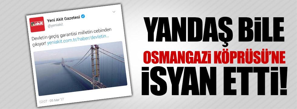 Yandaş bile Osmangazi Köprüsü'ne isyan etti!