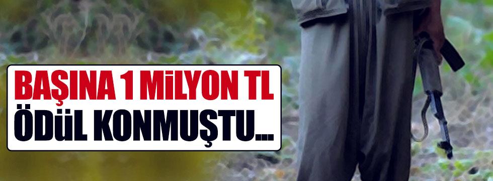 Başında 1 milyon lira ödül olan PKK'lı öldürüldü