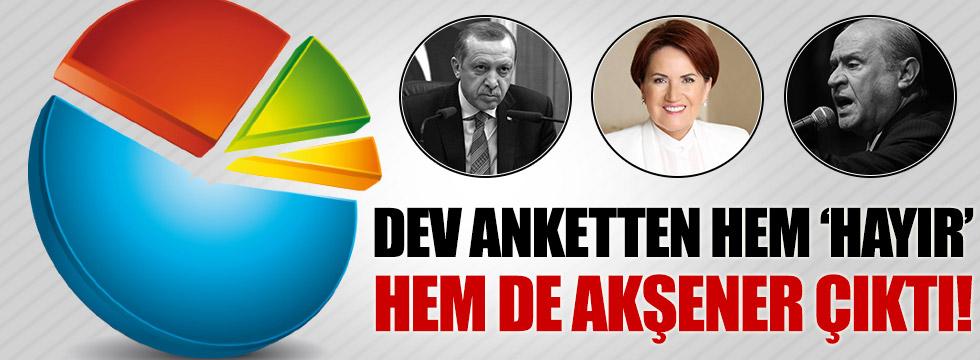 Dev anketten Erdoğan ve Bahçeli'ye kötü haber!
