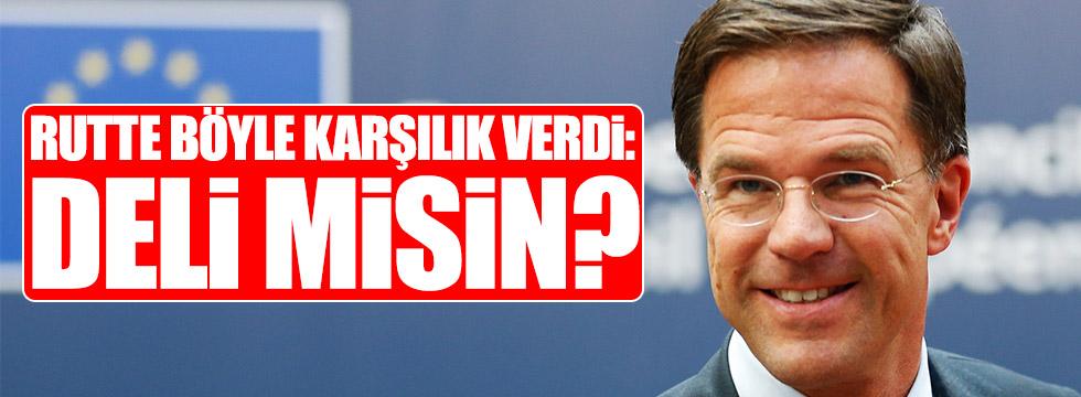 Hollanda Başbakanı Rutte böyle karşılık verdi!
