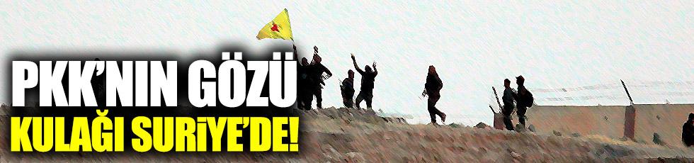 PKK'nın gözü kulağı Suriye'de!