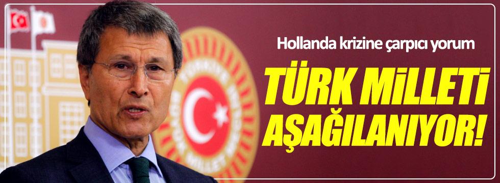 Halaçoğlu: Türk milleti aşağılanıyor