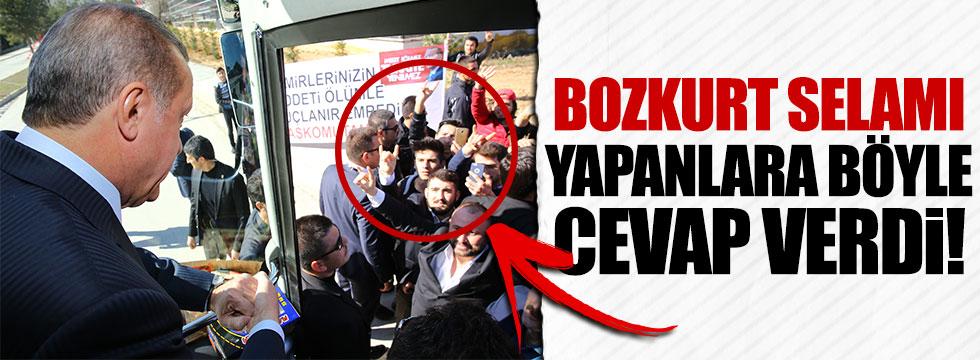 Erdoğan'dan kendisine bozkurt yapanlara ilginç karşılık