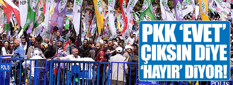 """Kaya: """"PKK evet çıksın diye hayır diyor!"""""""