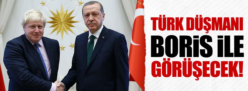 Erdoğan, Johnson'u kabul edecek